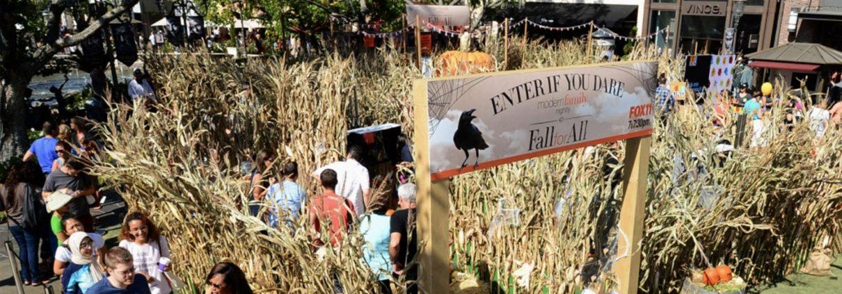 modern family fall for all corn maze entrance